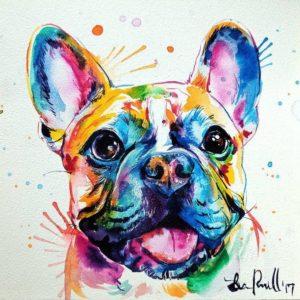 Színes Bulldog
