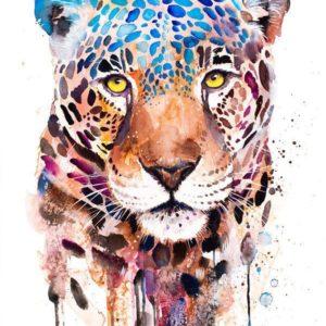 Színes leopárd – Középhaladóknak