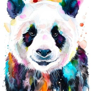 Színes Panda – Középhaladóknak