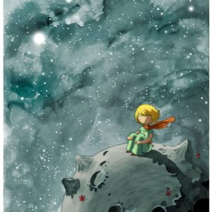 Kis herceg és a bolygó – Kezdőknek