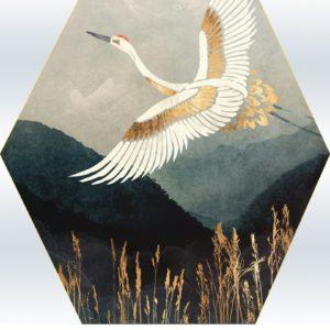 Arany daru száll – Kezdőknek