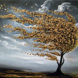 Arany fa a szélben – Kezdőknek