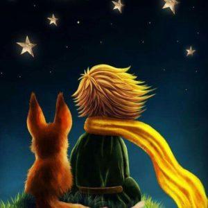 Kis Herceg a rókával – Kezdőknek