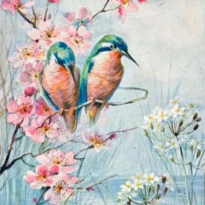 Kolibrik – ONLINE festés