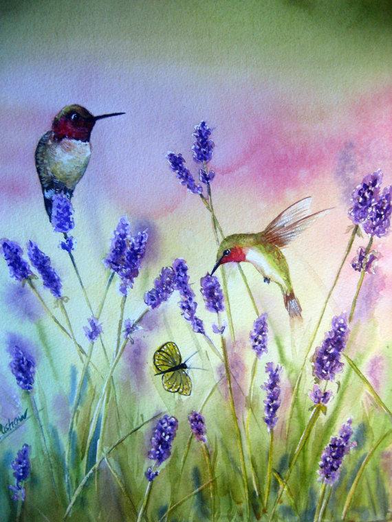 Ismeretlen festő - Kolibrik