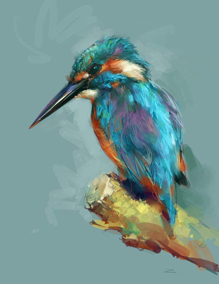 Színes-madárka