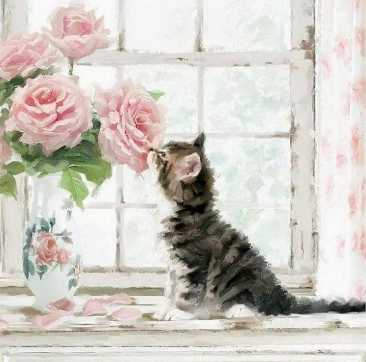 Maeneil - Cicus rózsákkal