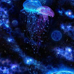 Világító-medúzák
